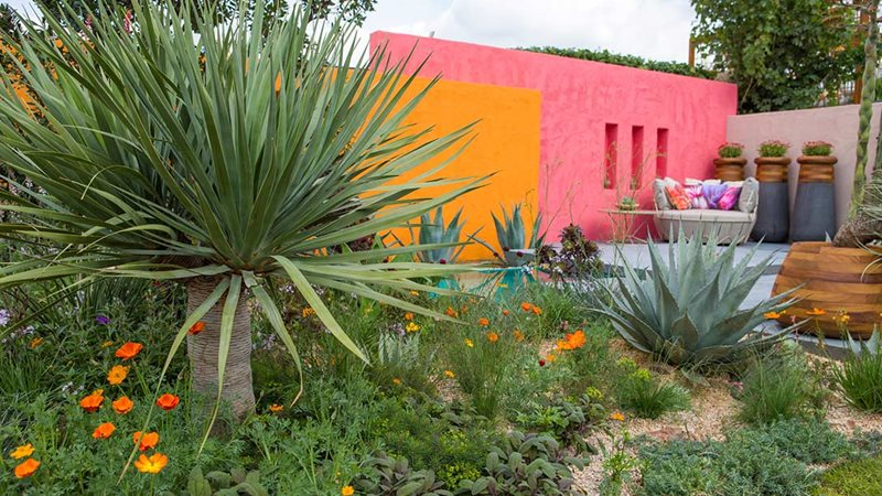 Inland Homes: Beneath a Mexican Sky