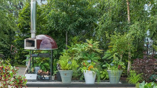 Pizza oven next to ceramic pots containing edibles