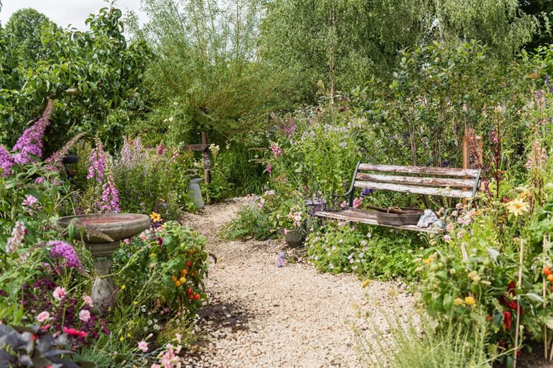 Growing a variety of plants to support wildlife
