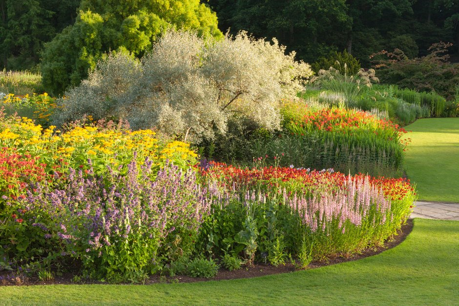 How to plant a pretty border