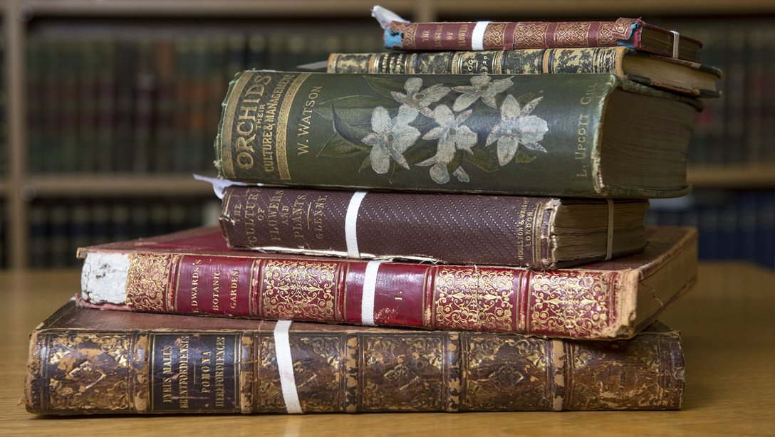 Nineteenth century books in the Lindley Library