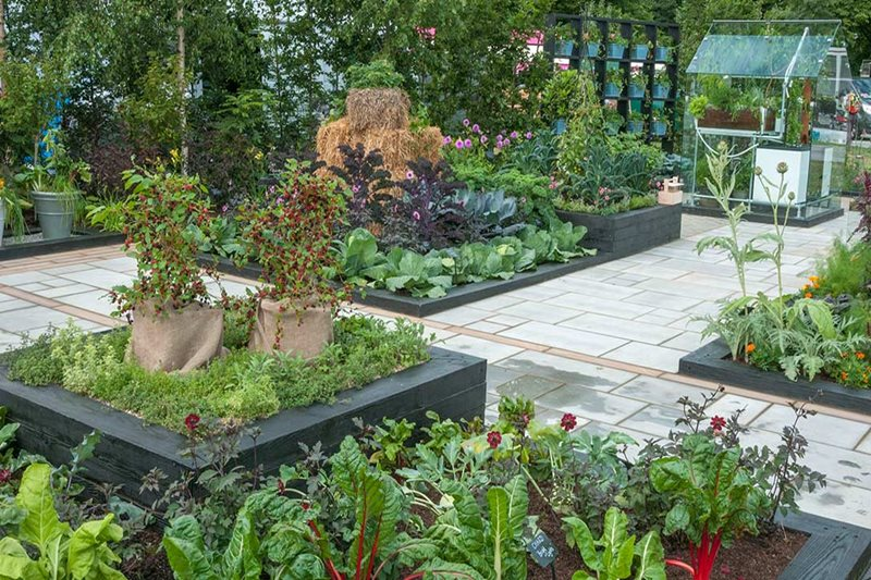 Contemporary borders. paving and glasshouse