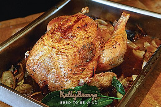 KellyBronze Turkeys