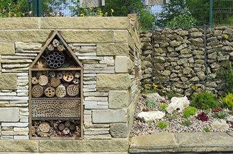 Insect hotel and new garden