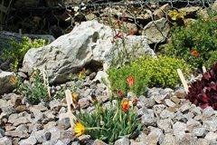 New alpine garden with new labels