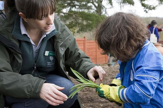 children and horticulture