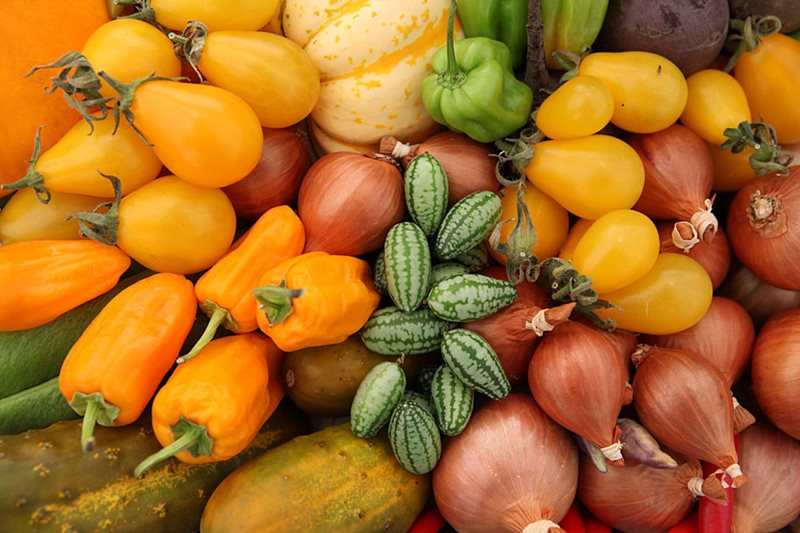 An array of vegetables