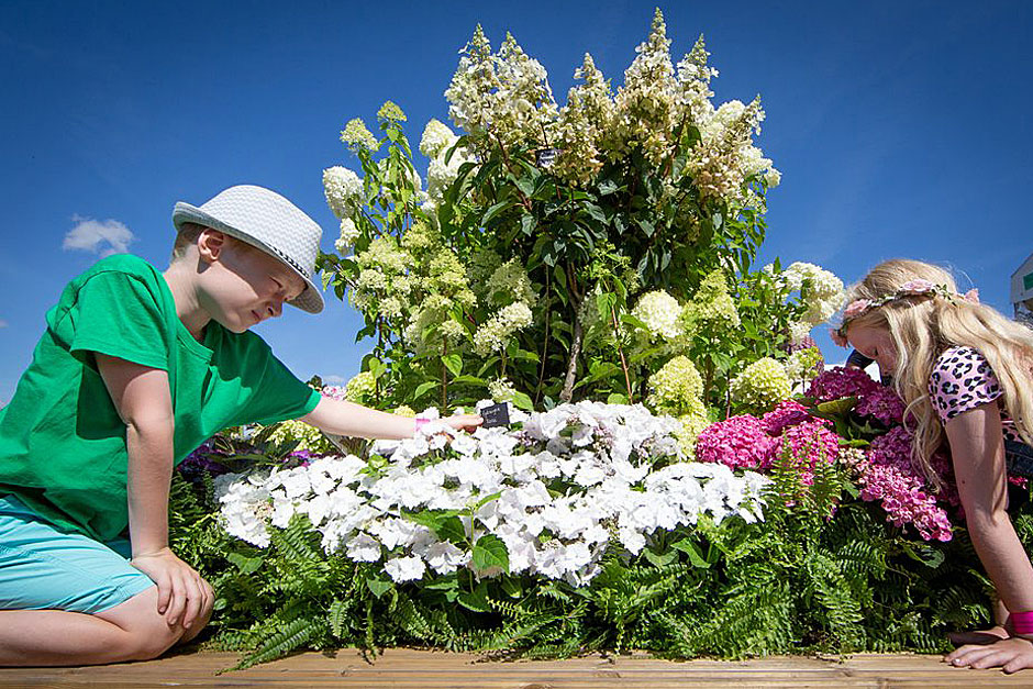 Children with a flower display at the RHS Hyde Hall Flower Show