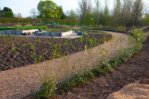 Planted borders following the curved path