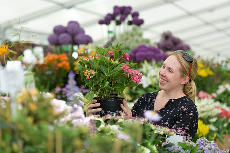 a visitor in the floral marquee
