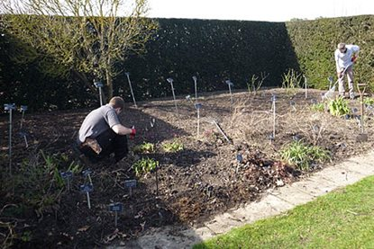 Clearing the beds at RHS Garden Hyde Hall reveals a sea of labels