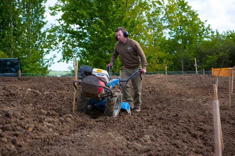 Preparing the soil with heavy machinery