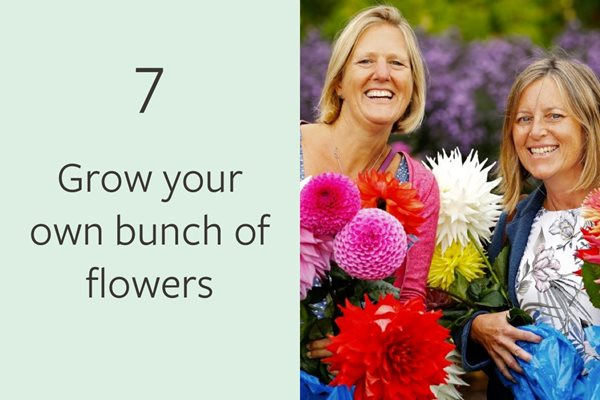 7. Grow your own bunch of flowers