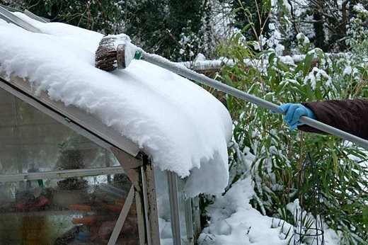 sweeping snow from greenhouse