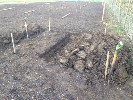 Double digging planting pits