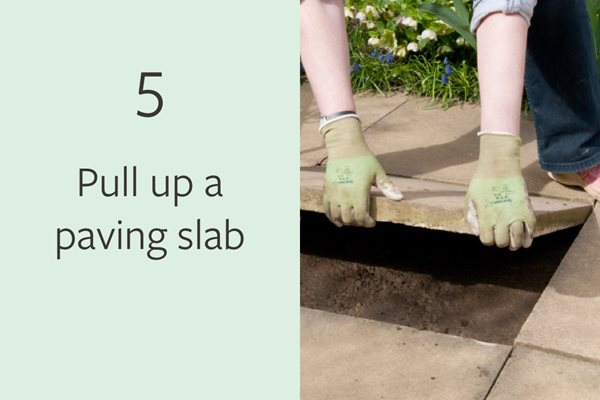 5. Pull up a paving slab