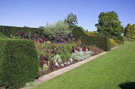 Hyde Hall's herbaceous border
